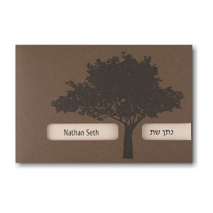 Generation Bar Mitzvah Invitation